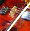 stringmusicianer