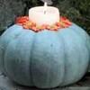 BluePumpkin