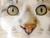 zippycats
