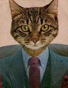 Mrcat