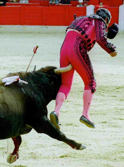 080220 bullfighter poked where it hurts
