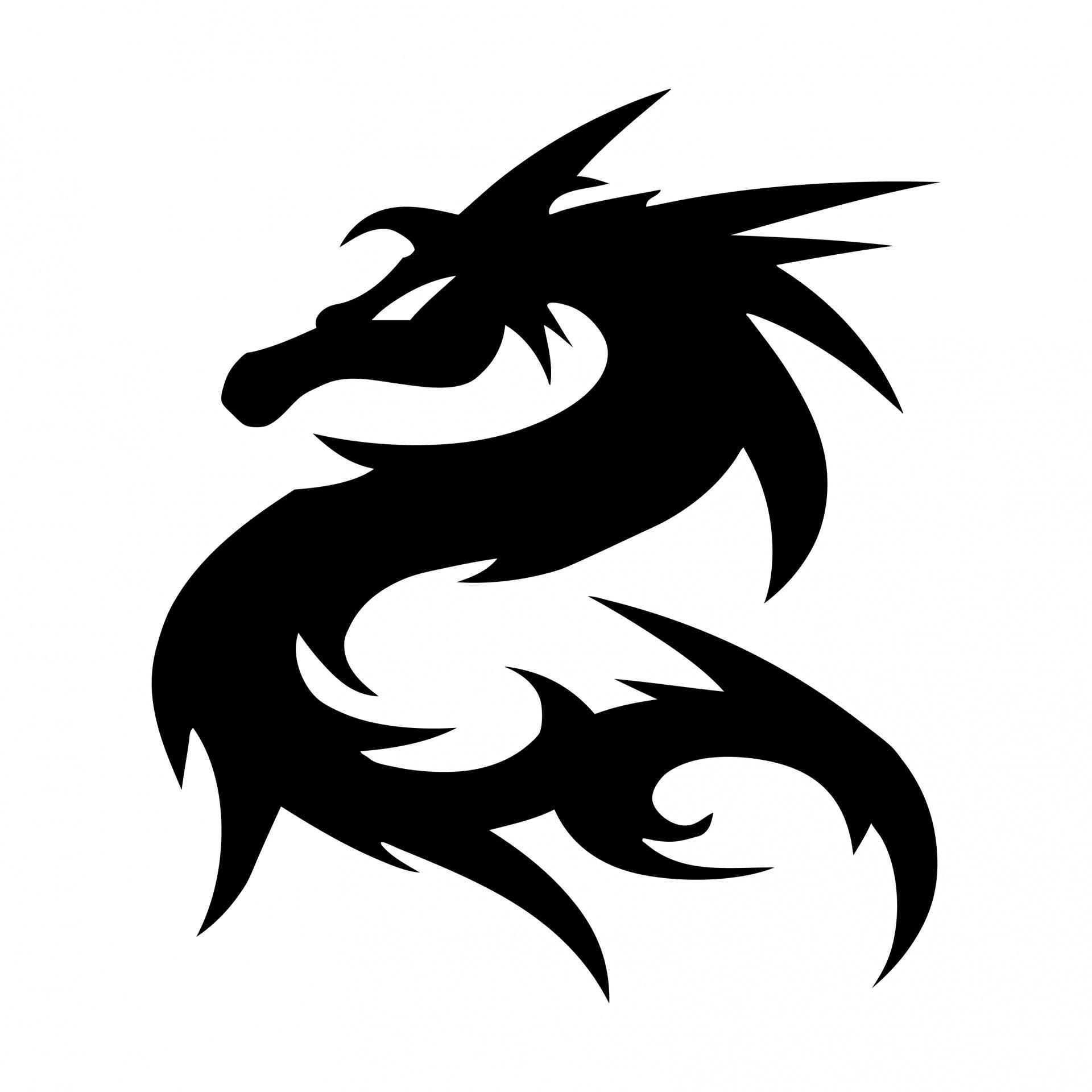 Dragon logo symbol silhouette