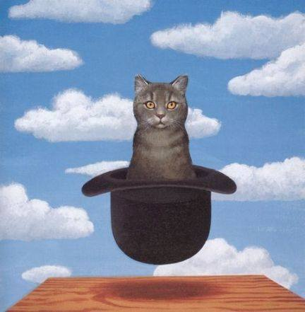 Magritte catinhat