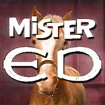 Mister ed color logo square