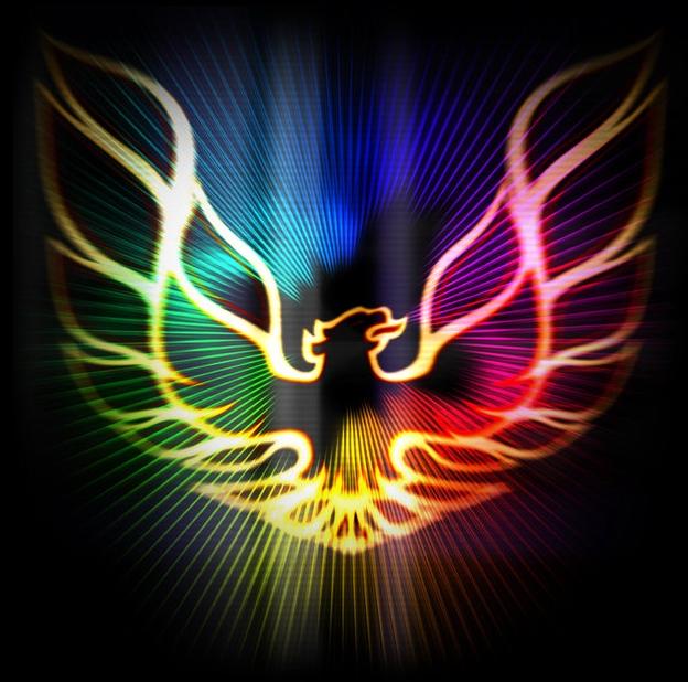 Rainbow phoenix   wide