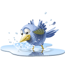Poolbird 1