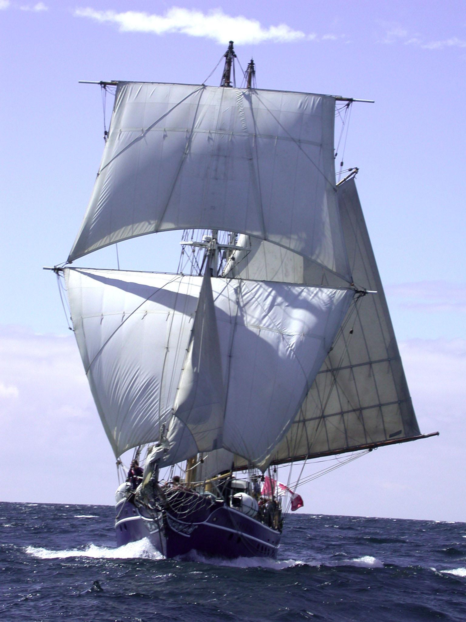 4. barque  full on