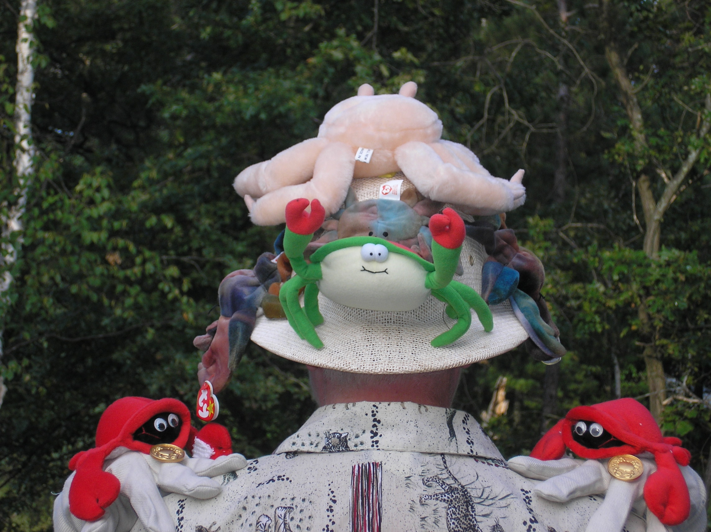 Crab hat rear