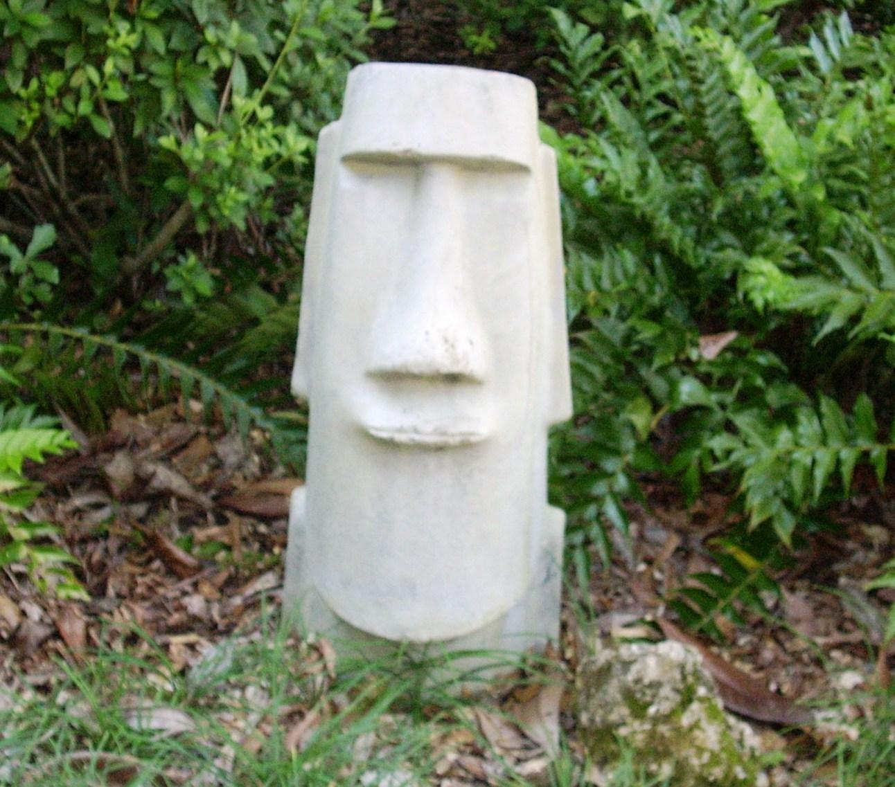 Moaimike fern