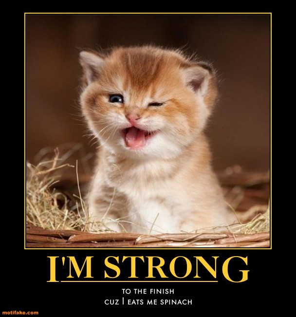 Im strong to the finish popeye kitty demotivational posters 1305218544