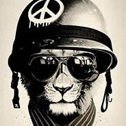 Helmet cat1