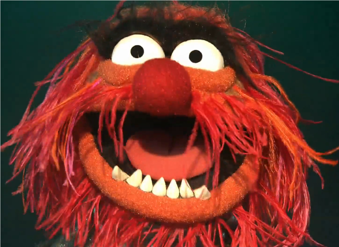 Animal the muppets