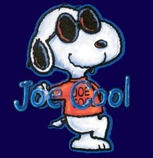 Joe cool2