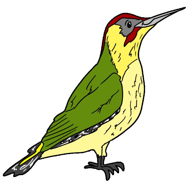 Gc main character image