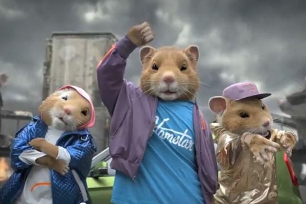 Kia hamsters 1