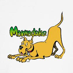 Marmaduke ready to play tee