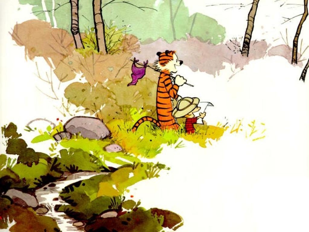 Calvin and hobbes calvin and hobbes 1395571 1024 768