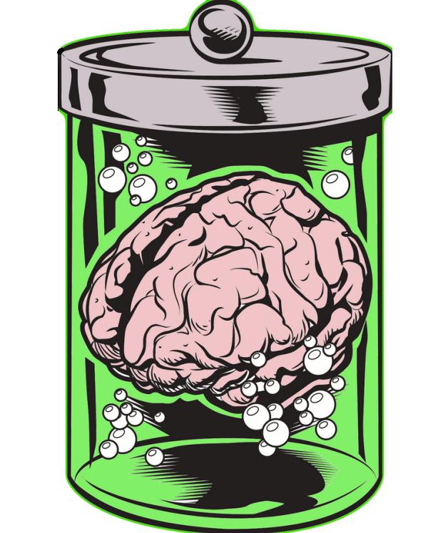 Brain 40