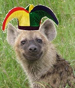 Hyena pup5