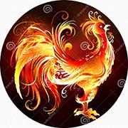 Gallo del fuego 71028399 small