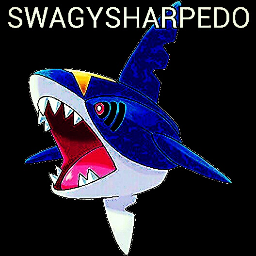 319sharpedo kindlephoto 80531852