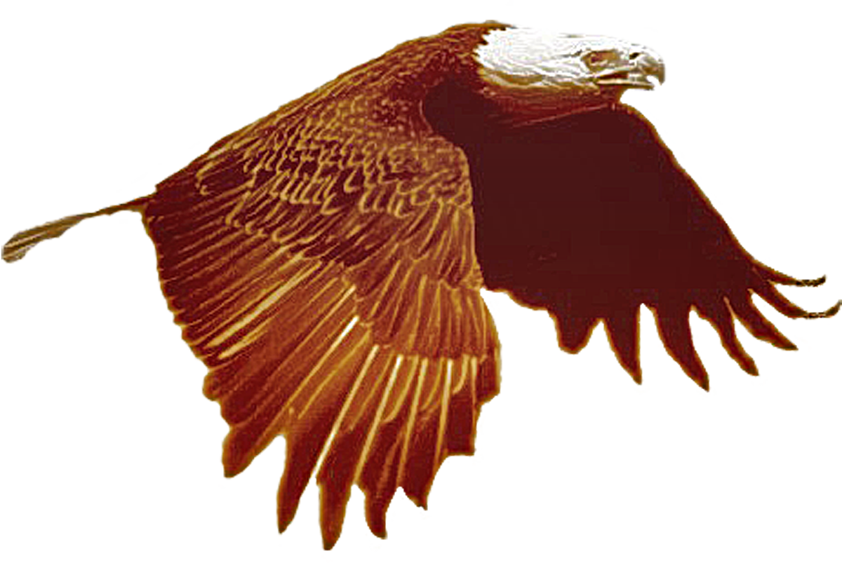 Eagle c 001 duo
