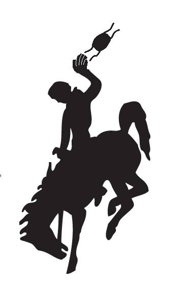 No more mask bucking horse