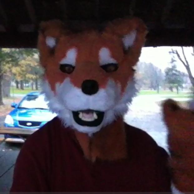 Owenwolfdogavatar2