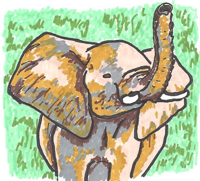 April elephant 2010