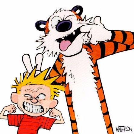 Calvin hobbes