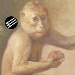 Eisene monkey