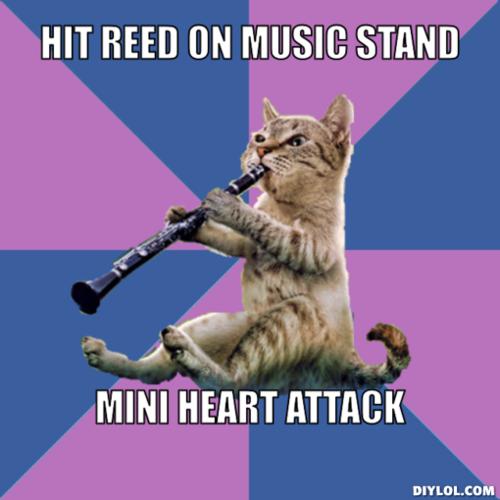 Clarinet cat