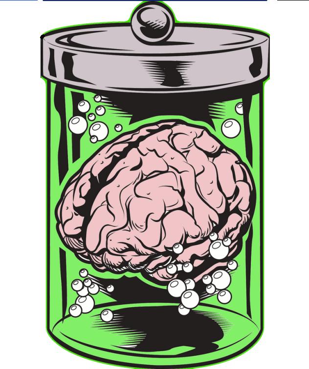Brain 39