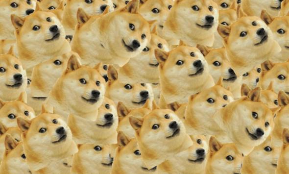 Doges evr