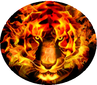 Fire tiger 15x