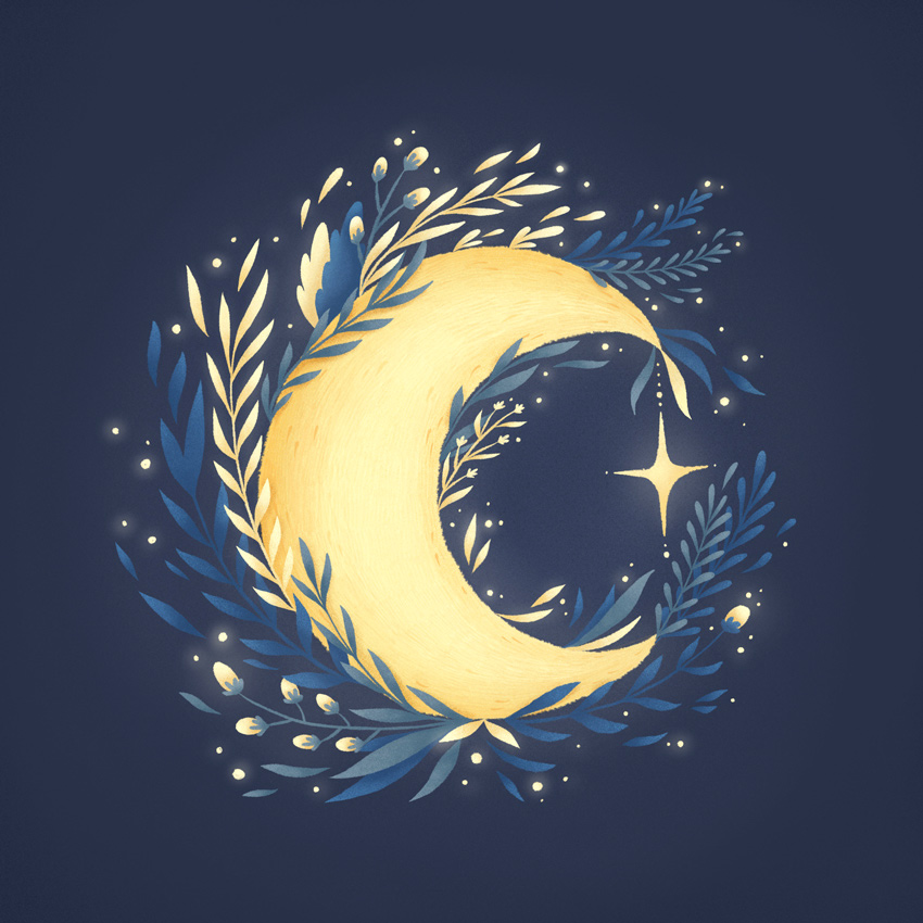 40 mystic moon procreate 850