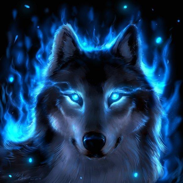 Majik wolf