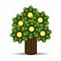 Joshuapeachtrees