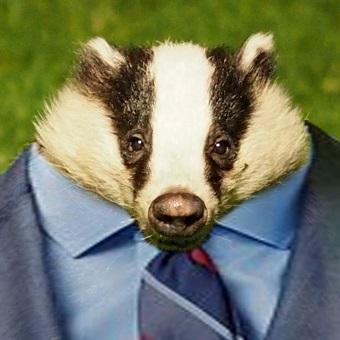 Badger avatar