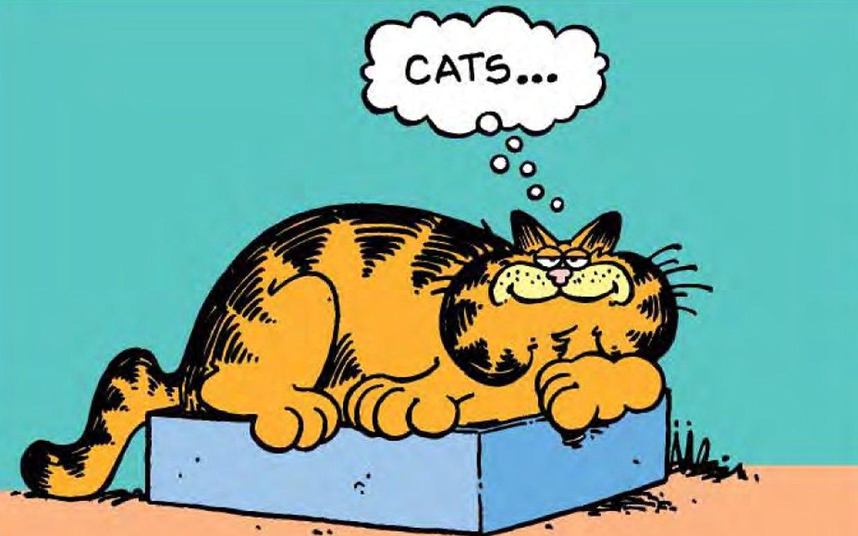 Garfield ftr