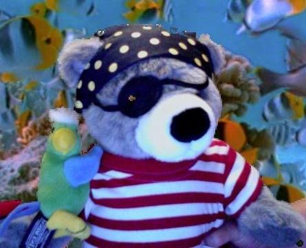 Jr pirate bear
