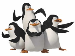 Pinguins madagascar